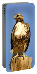 Red-tailed Hawk On Post Portable Battery Charger