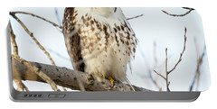 Red-tailed Hawk With Full Crop Portable Battery Charger by Ricky L Jones