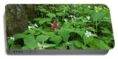 Red Trillium At Center Portable Battery Charger by Alan Lenk