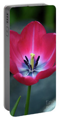 Red Tulip Blossom With Stamen And Petals And Pistil Portable Battery Charger