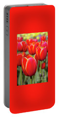 Red And Yellow Tulips I Portable Battery Charger