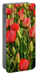 Red Tulips Portable Battery Charger by Mihaela Pater