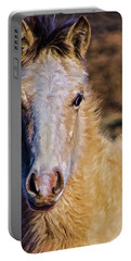 Red Willow Pony Portable Battery Charger