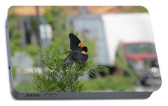 Portable Battery Charger featuring the photograph Red-winged Blackbird by Robert Banach