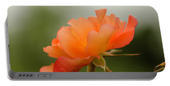 Portable Battery Charger featuring the photograph Redish Orange by Nick Boren