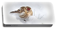 Redpoll Portable Battery Charger