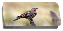 Redshafted Northern Flicker Portable Battery Charger