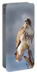 Redtail Portrait Portable Battery Charger