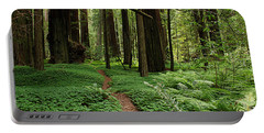 Redwood Forest Path Portable Battery Charger