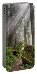 Redwood Light Portable Battery Charger