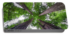 Redwood Tree Portable Battery Charger