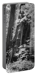 Redwood Trunk Portable Battery Charger