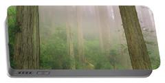 Redwoods Fog Portable Battery Charger