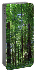 Redwoods No. 3-1 Portable Battery Charger