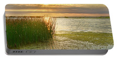 Reeds In The Sunset Portable Battery Charger