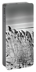 Reeds On A Frozen Lake Portable Battery Charger