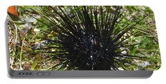 Reef Life - Sea Urchin 1 Portable Battery Charger