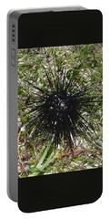 Reef Life - Sea Urchin 2 Portable Battery Charger