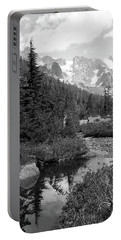 Reflected Pine Portable Battery Charger