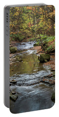Portable Battery Charger featuring the photograph Reflecting Autumn by Dale Kincaid
