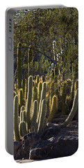 Portable Battery Charger featuring the photograph Reflecting The Sunshine by Phyllis Denton