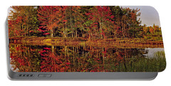 Portable Battery Charger featuring the photograph Reflection Island by Kathleen Sartoris