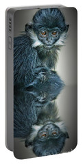Portable Battery Charger featuring the photograph Reflection Of A Francois Langur Monkey  by Jim Fitzpatrick