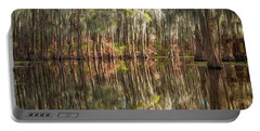 Reflections On The Bayou Portable Battery Charger