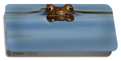 Reflections - Toad In A Lake Portable Battery Charger