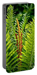 Refreshing Green Fern Wall Art Portable Battery Charger