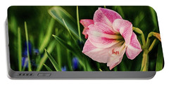 Remembering Amaryllis Portable Battery Charger