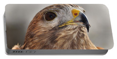 Rescued Hawk Portable Battery Charger