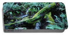 Resting Comfortably Portable Battery Charger by Donna Blackhall