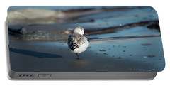 Resting Dunlin Portable Battery Charger
