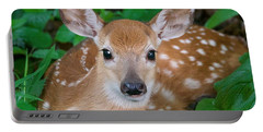 Resting Fawn Portable Battery Charger