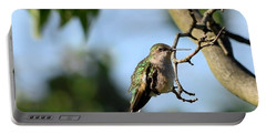 Resting Hummingbird Portable Battery Charger