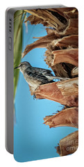 Resting Mockingbird Portable Battery Charger