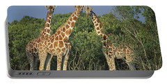 Reticulated Giraffe Trio Portable Battery Charger