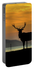 Reyes Morning  Portable Battery Charger