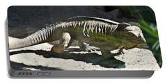 Portable Battery Charger featuring the photograph Rhinoceros Iguana by Miroslava Jurcik