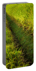 Rice Field Hiking Portable Battery Charger