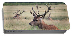 Richmond Park Stags Portable Battery Charger