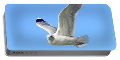Ring Billed Gull 2 Portable Battery Charger