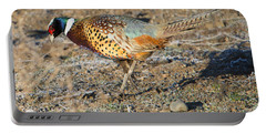 Ring-necked Pheasant Rooster Portable Battery Charger by Mike Dawson