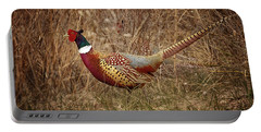 Portable Battery Charger featuring the photograph Ring Necked Pheasant by Susan Rissi Tregoning
