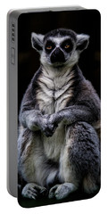 Portable Battery Charger featuring the photograph Ring Tailed Lemur by Chris Lord