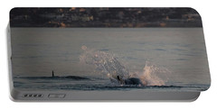 Portable Battery Charger featuring the photograph Risso's Dolphins At Play by Suzanne Luft