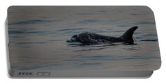 Portable Battery Charger featuring the photograph Risso's Dolphins by Suzanne Luft