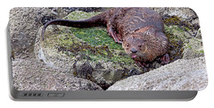 River Otter On The Rocks Portable Battery Charger