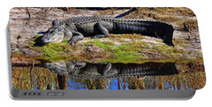 Portable Battery Charger featuring the photograph Riverside Reflection by Al Powell Photography USA
